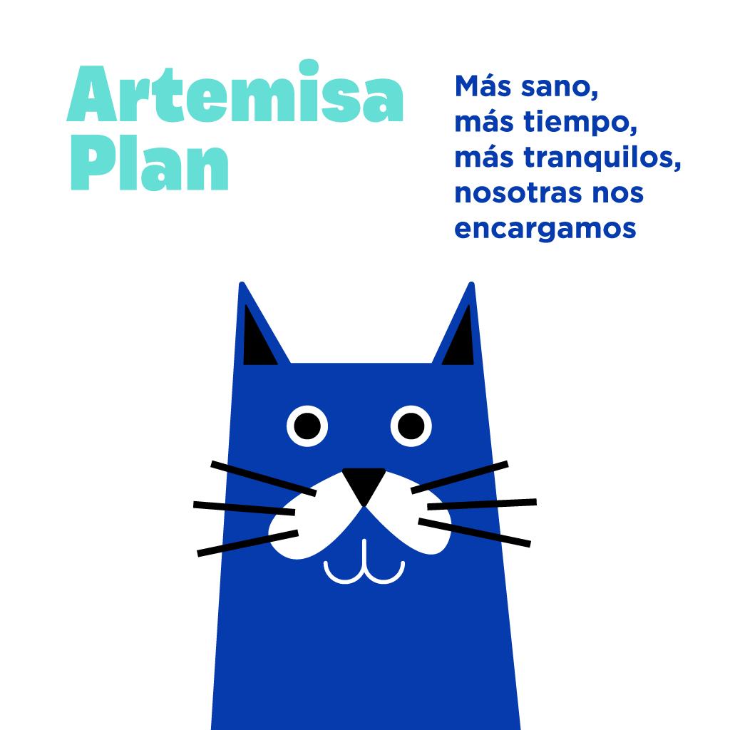 Planes de salud para gatos